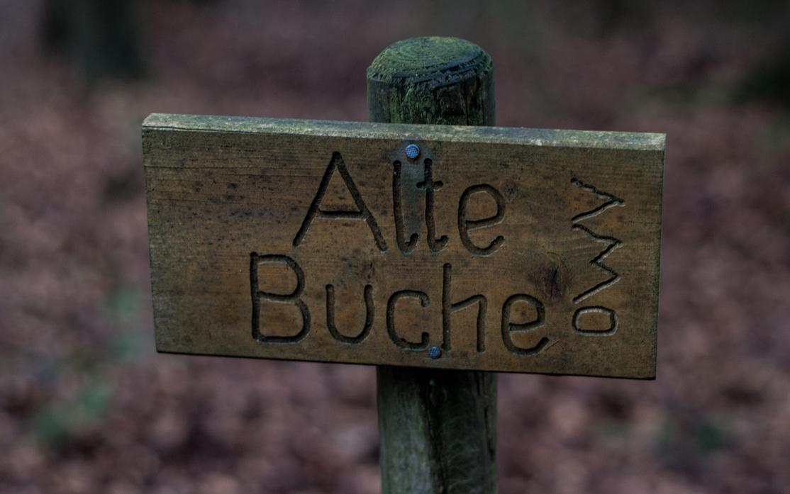 """Einfach Bilder – """"aaf da Boucha!"""""""