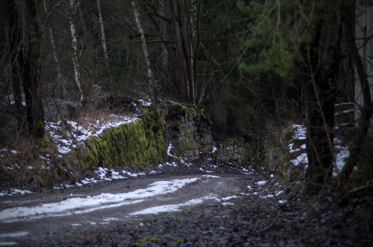Verlassener Steinbruch