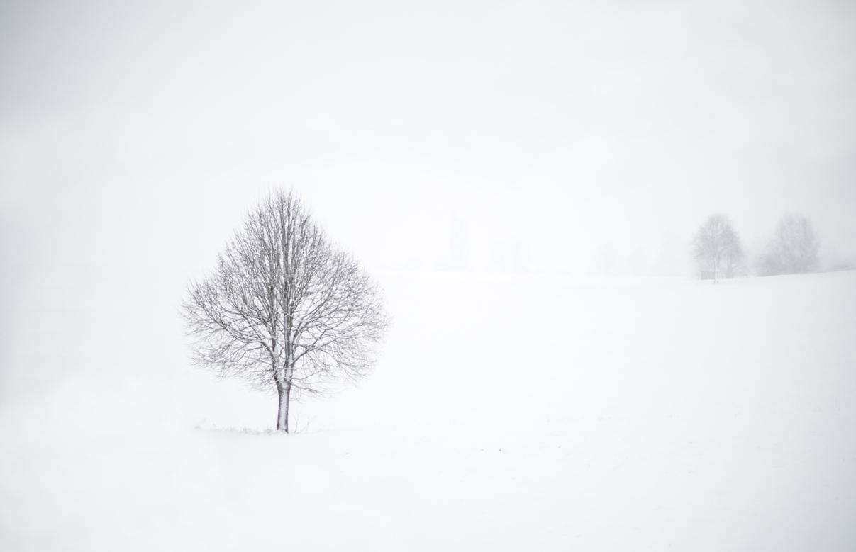 Einfach Bilder – Endlich Winter – zumindest wohl für ein paar Tage