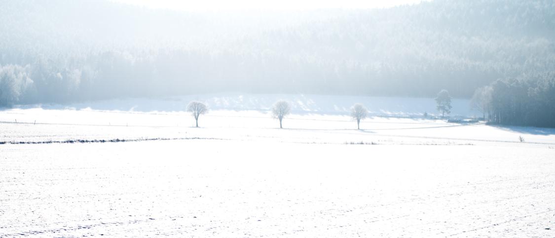Einfach Bilder – Winter – und ein Tal ohne Stromleitungen