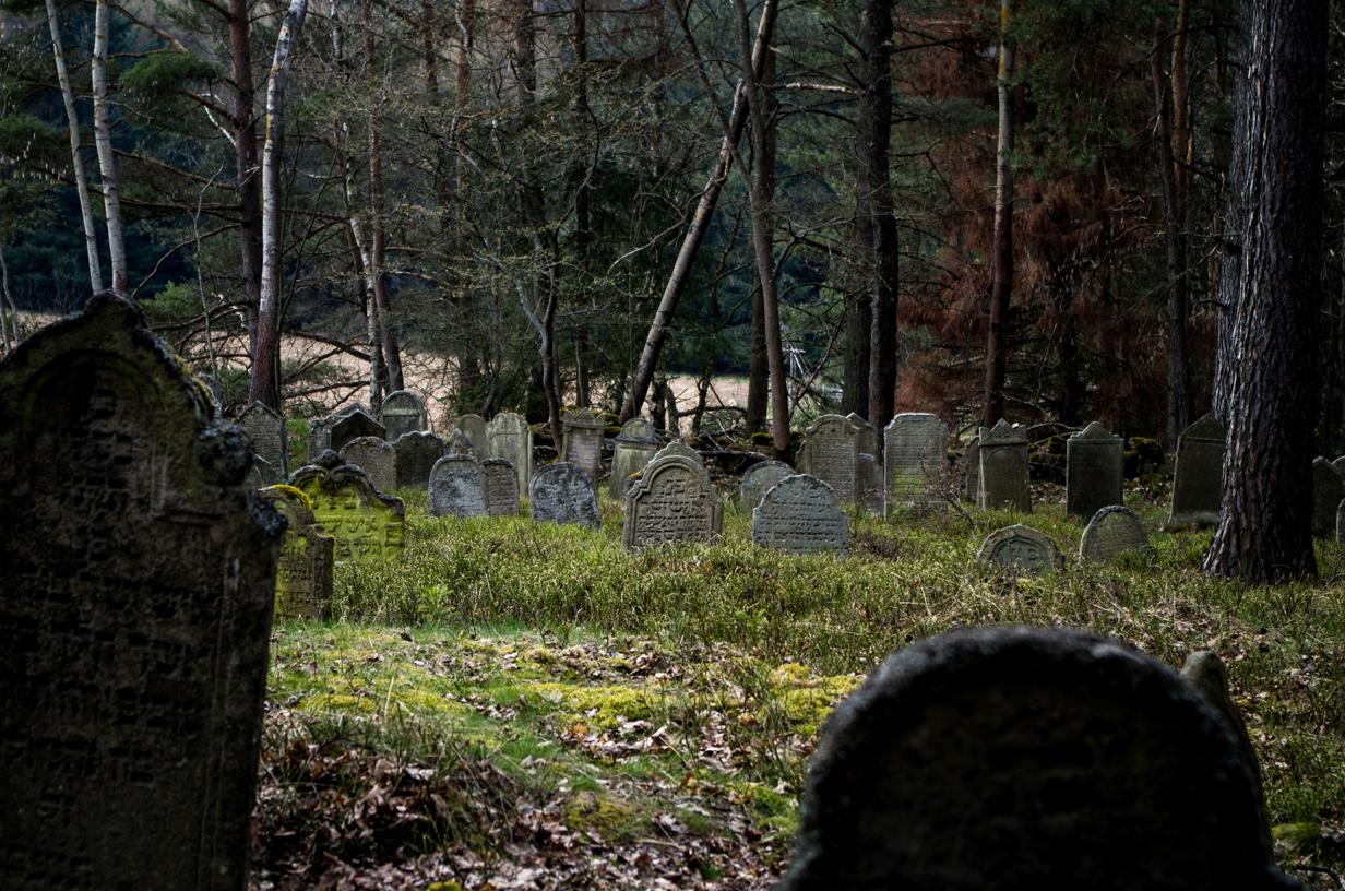 Verlassene Orte – Der jüdische Friedhof von Langendörflas