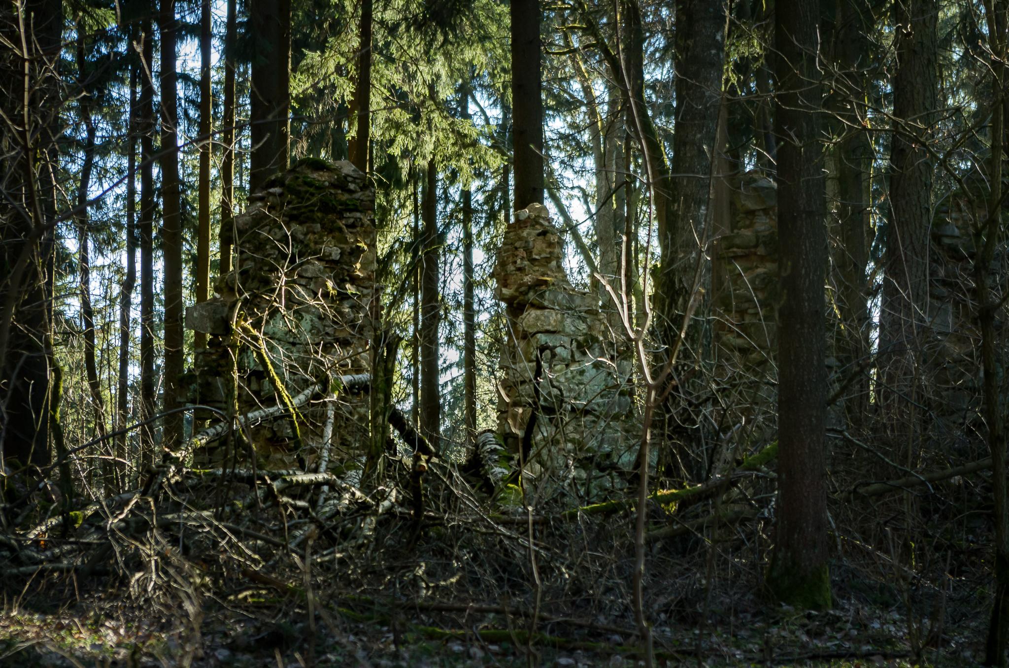 Verlassene Orte – Schloss und Gruft Waldheim (Zahájí)