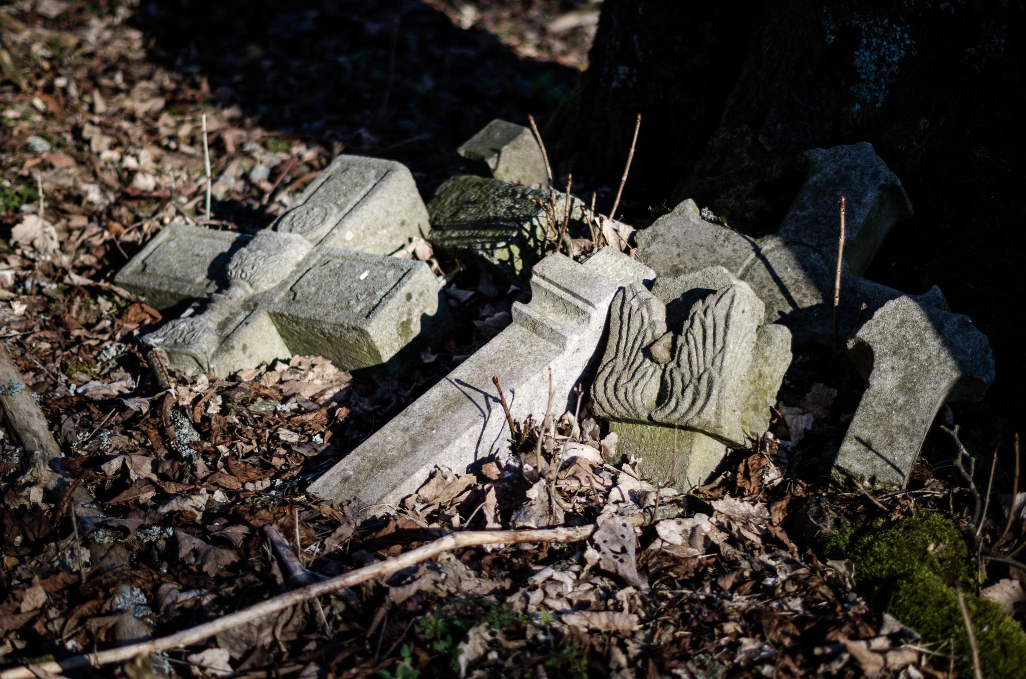 Verlassene Orte – Von der Gruft zum Friedhof – Neulosimthal (Jedlina)